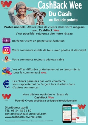 marketing pour centre commercial3.jpg